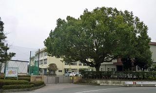 熊本市立帯山西小学校